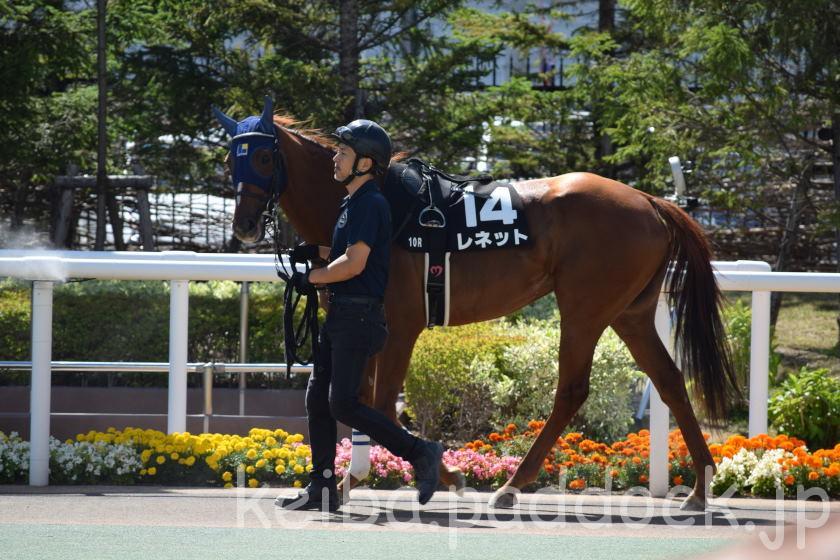 レネット 札幌競馬場 2018/07/28