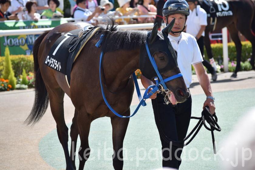 ロードラズライト 札幌競馬場 2018/07/28