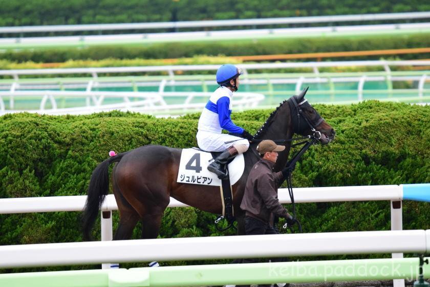 ジュルビアン 返し馬 函館競馬場