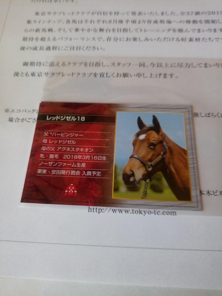 出資馬カード