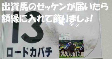 【競馬レースゼッケンの額装】出資馬のゼッケンが届いたら額縁に入れて飾りましょ!