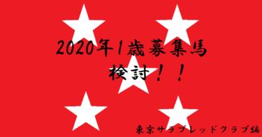 1歳募集馬(19年産)出資検討します2020 東京サラブレッドクラブ編