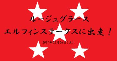 ルージュグラース エルフィンステークスへ!(2021/02/06)